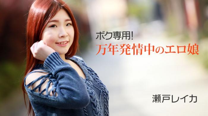 ボク専用!万年発情中のエロ娘 - 瀬戸レイカ 2011